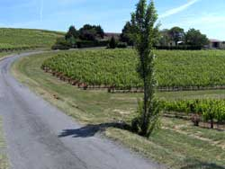 Route to Domaine Vayssette